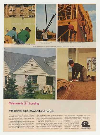 Celanese Chemical Housing Paint Pipe Plywood (1969)