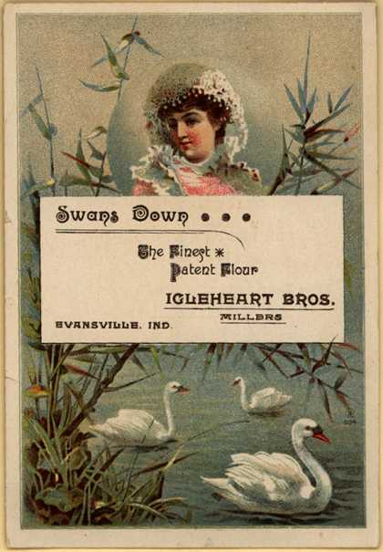Inglehart Brother's Swans Down Flour – Swans Down Patent Flour
