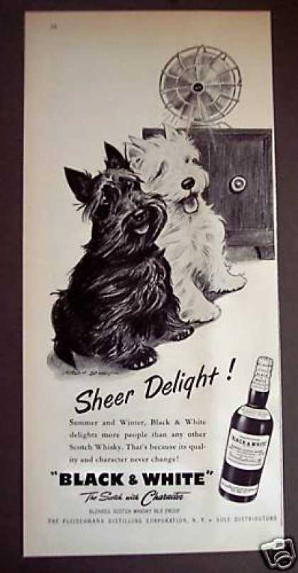 Scotty Dogs Keep Cool Black & White Scotch (1956)