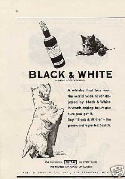 B&w Ad Westie/scottie (1935)