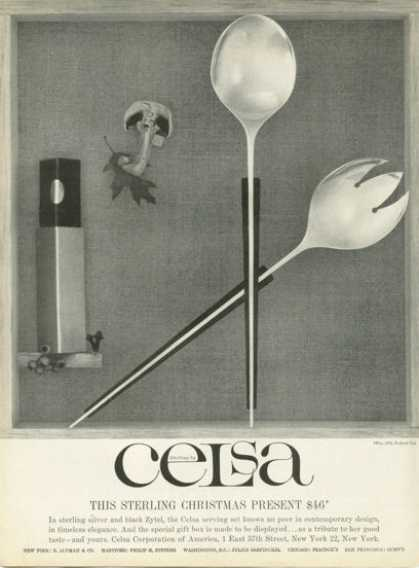 Celsa Sterling Silver Black Zytel Serving Spoon (1958)