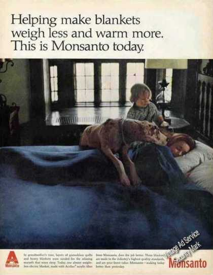 Great Dane On Bed Monsanto Electric Blanket (1967)