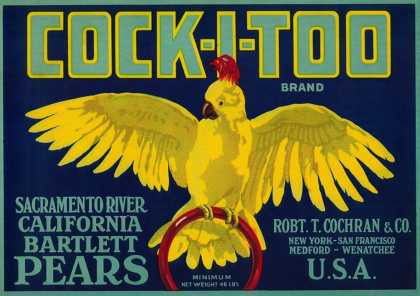 Cock-I-Too Pear Crate Label – Sacramento Valley, CA