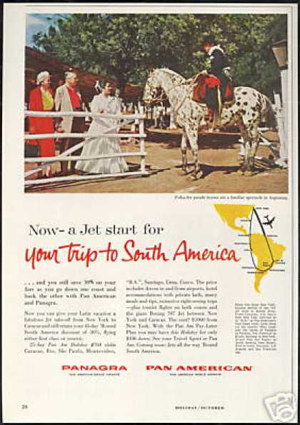 Polka Dot Horse Panagra Pan American Airways (1959)
