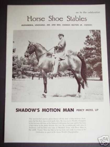 Tennessee Walking Horse Champion Photo Trade (1965)