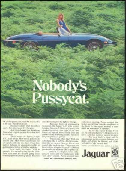 Jaguar E Type V-12 Convertible Vintage Car (1974)