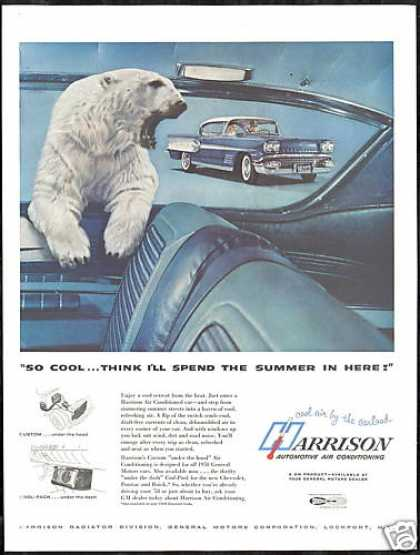 Pontiac Bonneville Car Polar Bear Harrison Air (1958)