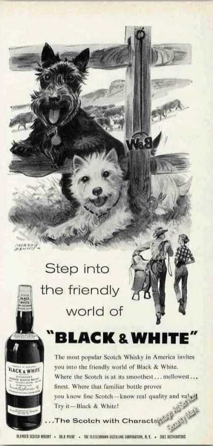 "B&w Scotch Terrier/westie ""Friendly World"" (1960)"