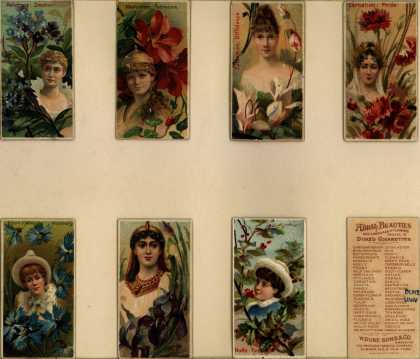 W. Duke Sons & Co.'s Duke's Cigarettes – Floral Beauties – Image 1