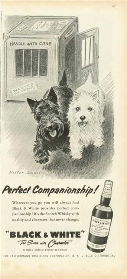 Black & White Scottish Ad Perfect Companionship (1959)