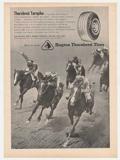 Dayton Thorobred Tires Horse Racing Photo (1965)