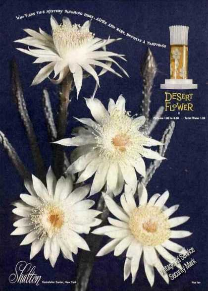Desert Flower Perfume Beautiful Flowers Shulton (1949)