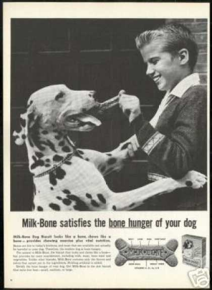 Dalmatian Photo Milk Bone Dog Biscuit Vintage (1959)