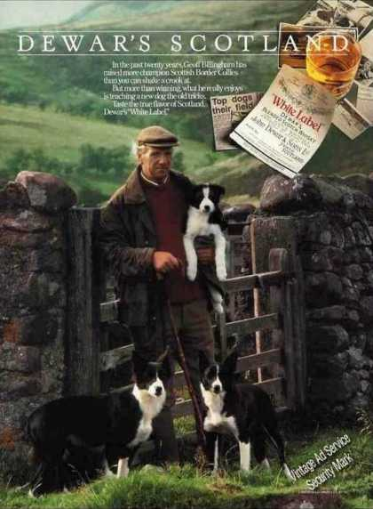 Dewar's Ad With Nice Border Collies Photo (1993)