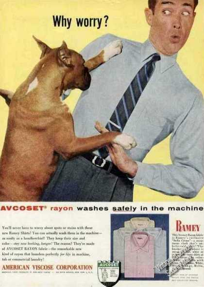 Boxer Photo In Ramey Shirts (1967)