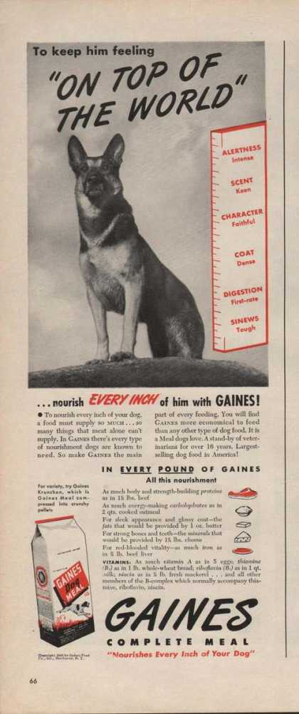 Gaines Dog Complete Nourishes Meal (1946)