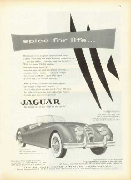 Jaguar Xk-140 Sports Roadster (1955)
