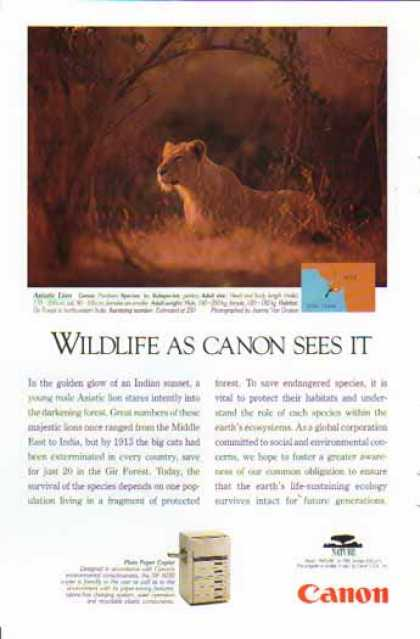 Canon NP 6030 Plain Paper Copier 1994 – Asiatic Lion (1994)