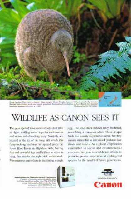 Canon Semiconductor Manufacturing Equipment – Great Spotted Kiwi Bird (1998)