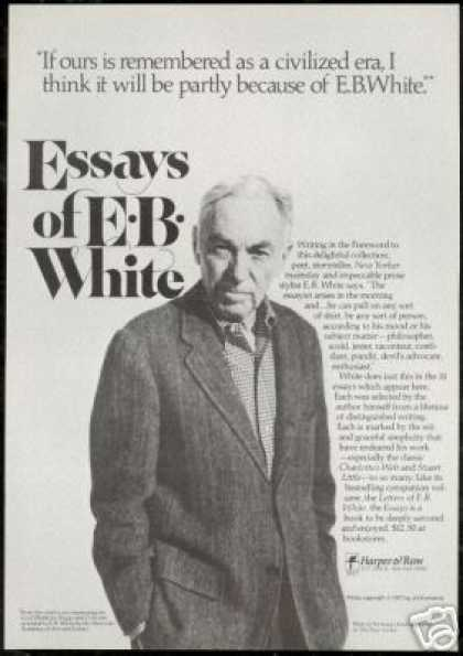 Essays of EB E.B White Book Promo Vintage (1977)