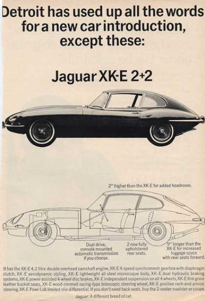 Jaguar Xk-e 2+2 Sport Coupe Diagram (1966)