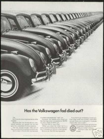 VW Volkswagen Bug Fad Vintage Photo (1966)