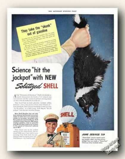 Solutized Shell Gasoline Skunk (1941)
