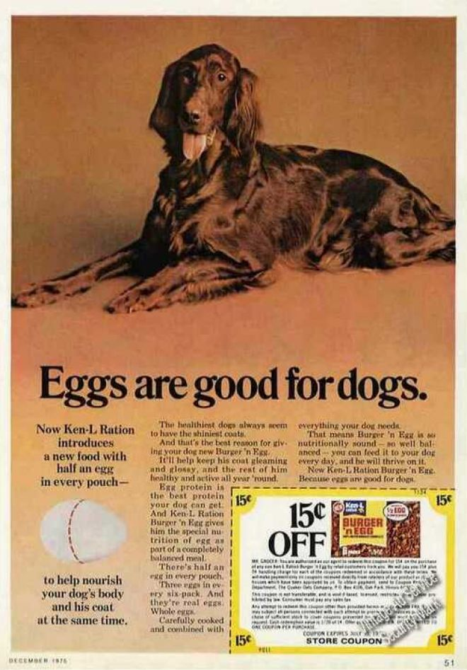Vintage Animal Advertisements Of The 1970s Page 3