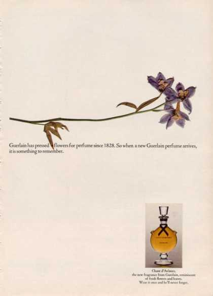 Chant D' Aromes Guerlain Perfume Bottle (1964)