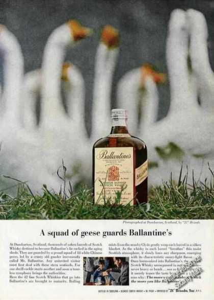 A Squad of Geese Guards Ballantine's Scotch (1963)