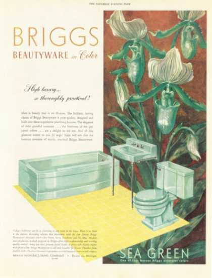 Briggs Beautyware Bath Tub Basin Stool (1952)
