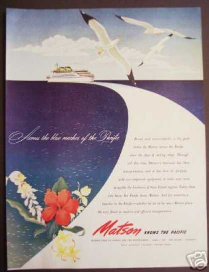 Matson Cruise Ship Lines Hawaii So Pacific Art (1945)