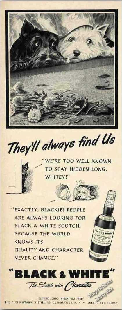 "B&w Scotch Terrier/westie ""They'll Always Find"" (1951)"