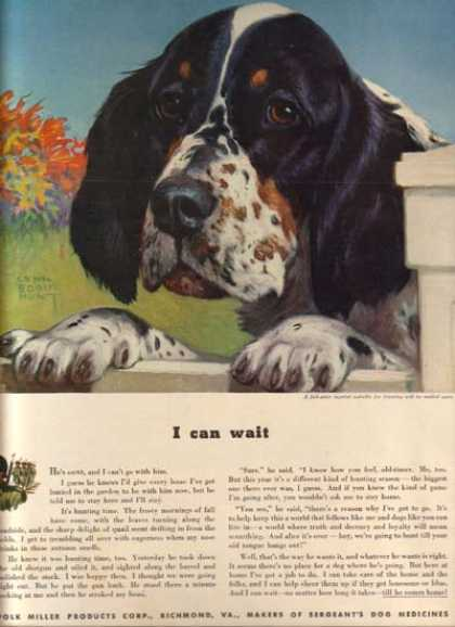 Sergeant's Dog Medicine's Lynn Bogue Hunt (1942)