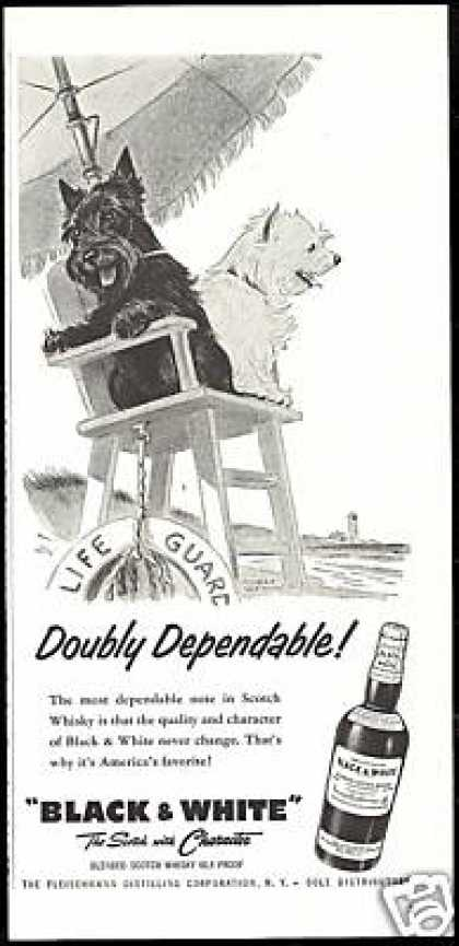 Scottish Terrier Westie Life Guard B&W Scotch (1957)