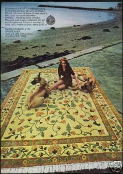 Great Dane Dog Photo Chindia Carpet Vintage (1973)