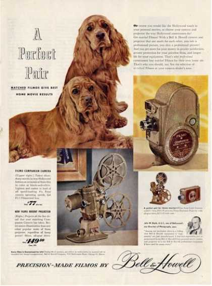 Bell & Howell Camera Cocker Spaniel Ad T (1949)