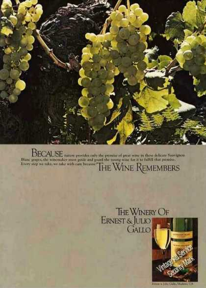 "Winery of Ernest & Julio Gallo ""Wine Remembers"" (1979)"