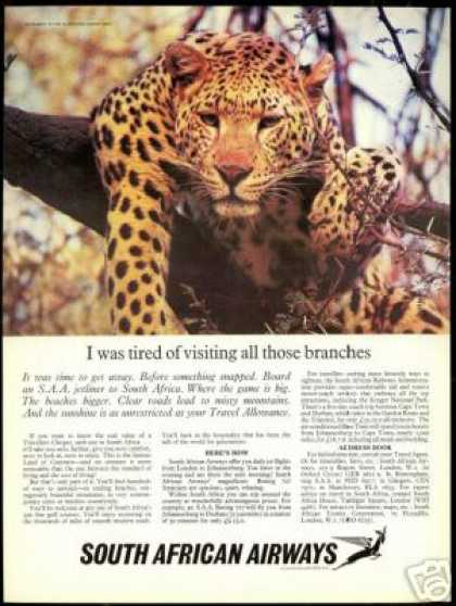 Leopard Photo South African Airways Airlines (1966)