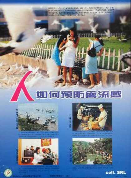 How to prevent avian flu? (2004)