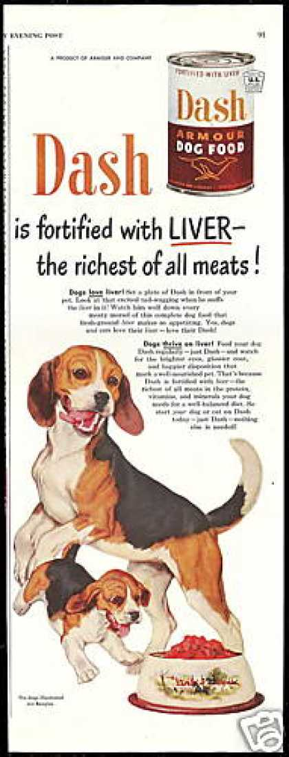 Cute Beagle Puppy Dash Dog Food (1950)