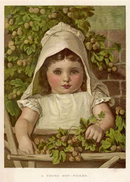 Young Hop-Picker
