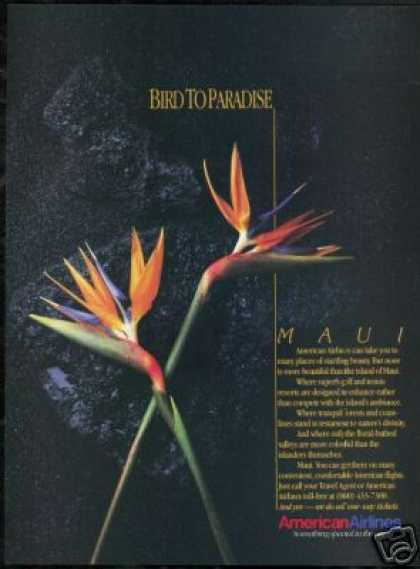 American Airlines Hawaii Maui Bird of Paradise (1986)