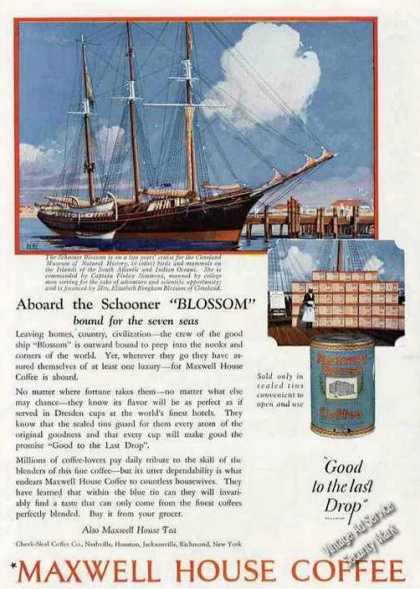 "Maxwell House Coffee Ad Schooner ""Blossom"" Art (1924)"