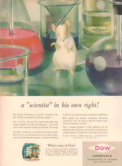 Dow Chemicals – Mr. Rat a scientist in his own right – Sold (1951)