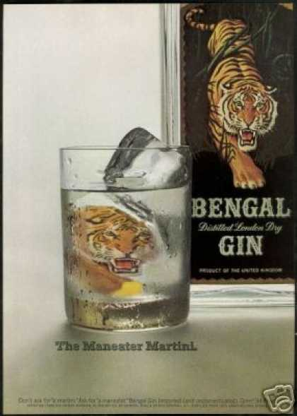 Bengal Tiger Glass Gin Vintage Photo (1968)