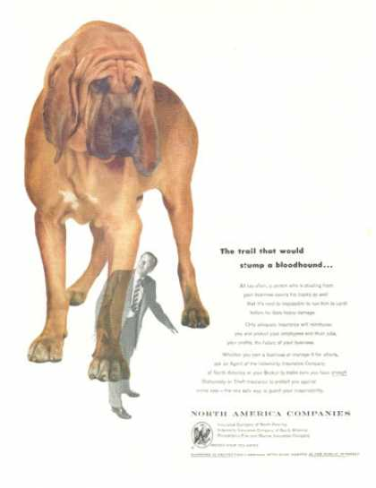 Insurance North America Bloodhound (1953)