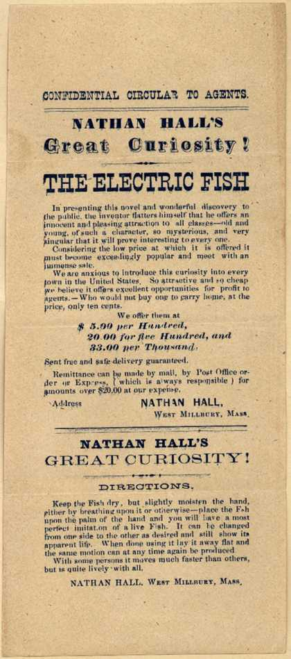 Nathan Hall's The Electric Fish – Nathan Hall's Great Curiosity! The Electric Fish.