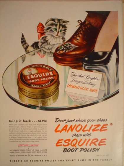 Esquire boot polish Kitten theme (1949)