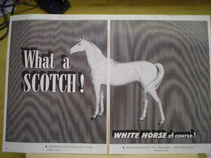 White Horse Scotch Horse Striking looking (1953)